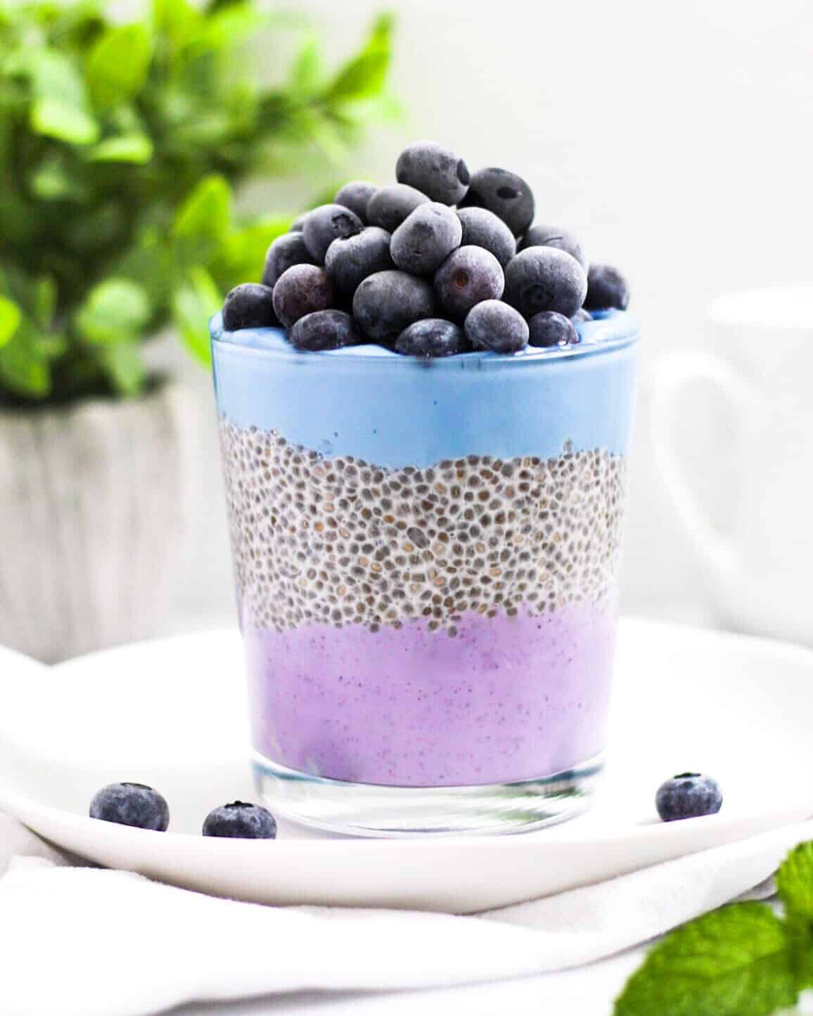 Cup filled with a layer of purple acai vegan yogurt, chia seed pudding, and blue spirulina vegan yogurt, topped with blueberries